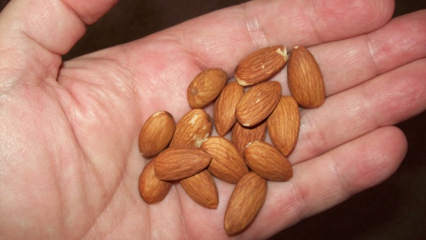 Going Nuts On A Low Carb Diet